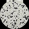 Black Splash Bead Crete